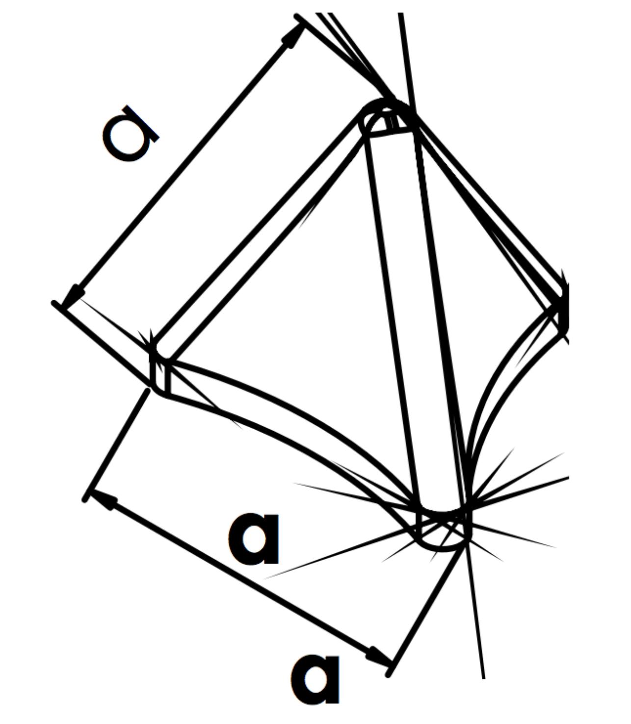 Trójząb piramidalny - PDZ
